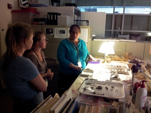 Dr. Moore, far right, discusses zooarchaeology with Lauren Volkers and Ashley McCuistion.