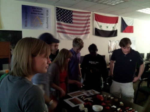 Clover Hill High School students look at printed plastic replicas of artifacts and animal bones.