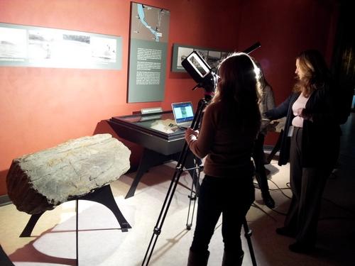 Ashley scanning petroglyphs.