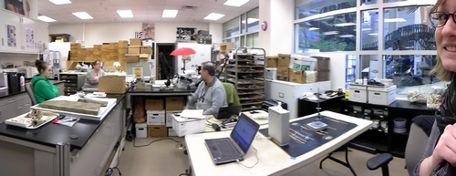 Panoramic view of the archaeology laboratory.