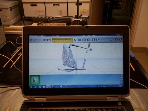 Digital model of the sturgeon scute created as it is being scanned.