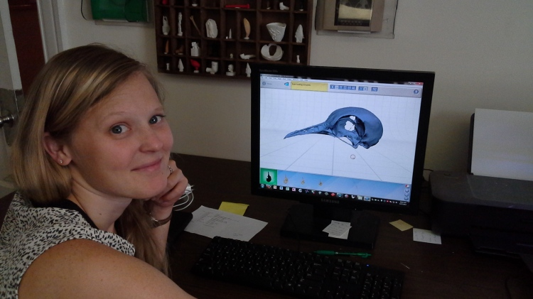 VCL Digital Curation Supervisor Lauren Volkers edits the digital model of a passenger pigeon skull.