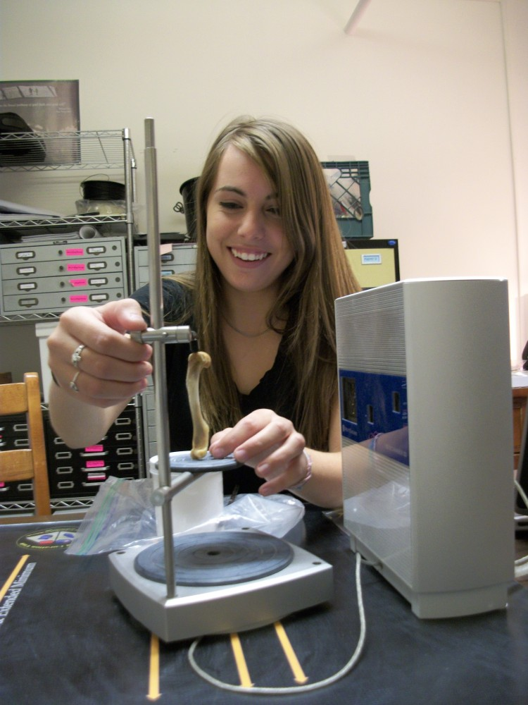 VCL's First Digital Zooarchaeologist Marianna Zechini prepares to 3D scan a raccoon femur.
