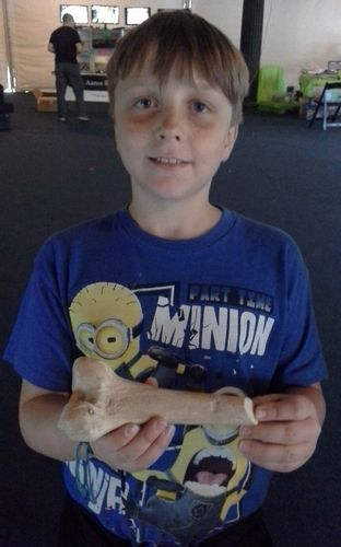 Young archaeology fan holds a 3D printed replica of a human femur embedded with an arrow point scanned at Jamestown.