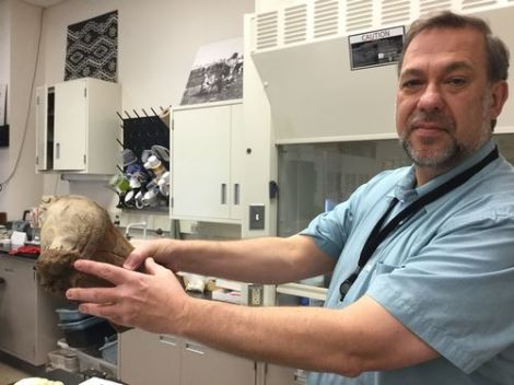 Muskrat Love (Ice Age Style), Giant Ground Sloths, a Giant Beaver, and a MastodonHumerus
