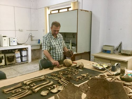 bkm_Mohan of means examining skeletons
