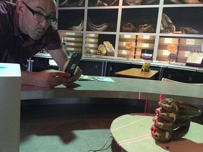 bkm_grant watches as one of his mastodon molars is 3D scanned