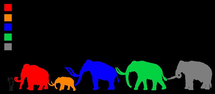 Mammuthus_Size_comparison