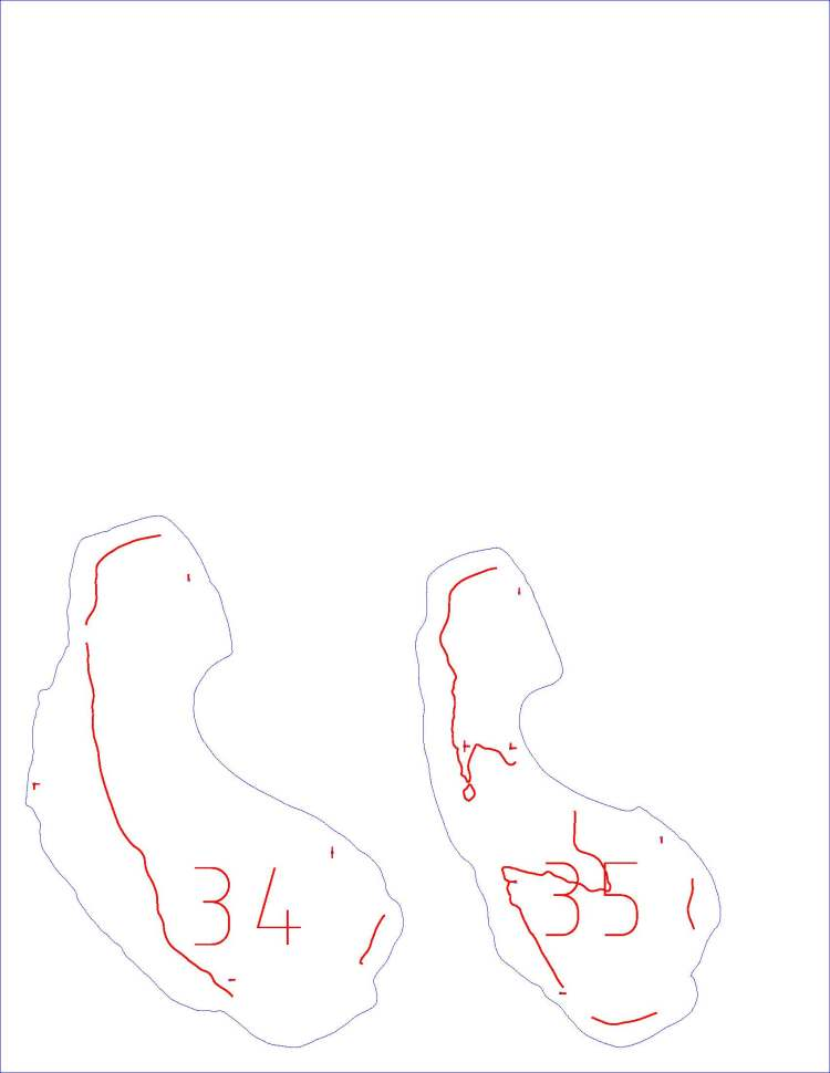 2195_mastodon_molar_franklin_sliced_Page_31